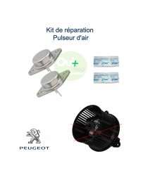 Kit réparation pulseur d'air Peugeot